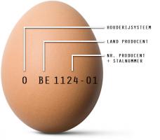 Wat staat er op een ei?